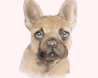 Pet Portrait — Digital
