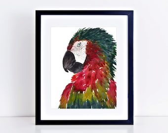 ORIGINAL Parrot Watercolor Painting || fine art, wall art, parrot, animal lover, tropical bird, rainforest, original watercolor painting