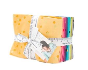Ombre Confetti - Fat Quarter Bundle - V and Co. for Moda - OMBRE-FQ - 20 prints
