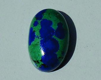 Orbicular Azurite in Malachite cab