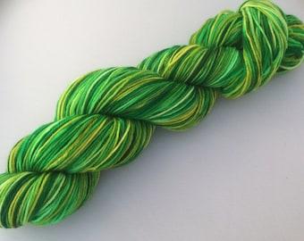 Lallybroch  - hand dyed yarn 3.5 oz 437 yds