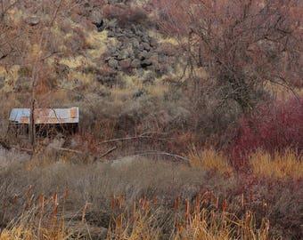 Nature Photography, Yakima, WA, Cowiche Canyon