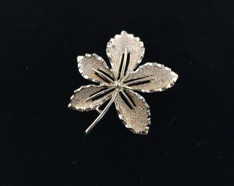 Vintage, Sarah Coventry Signed, Gold Tone, Leaf Brooch