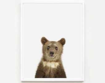 Baby Animal Nursery Art Print. Bear Cub Little Darling. Safari Animal Print. Animal Nursery Decor. Baby Animal Photo.