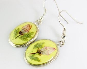 Yellow Delight  Real Flower Earrings, Dangles,  Pressed Flower Jewelry (1384)