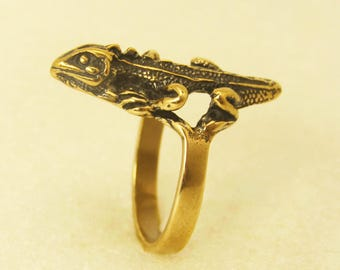 Ring Lizard
