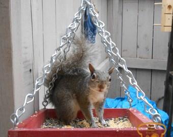 Hanging Platform Squirrel Feeder