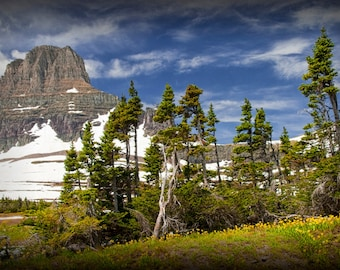 Rocky Mountain Range with Pine Trees at Glacier National Park in Montana No.1631 -  A Fine Art Landscape Photograph