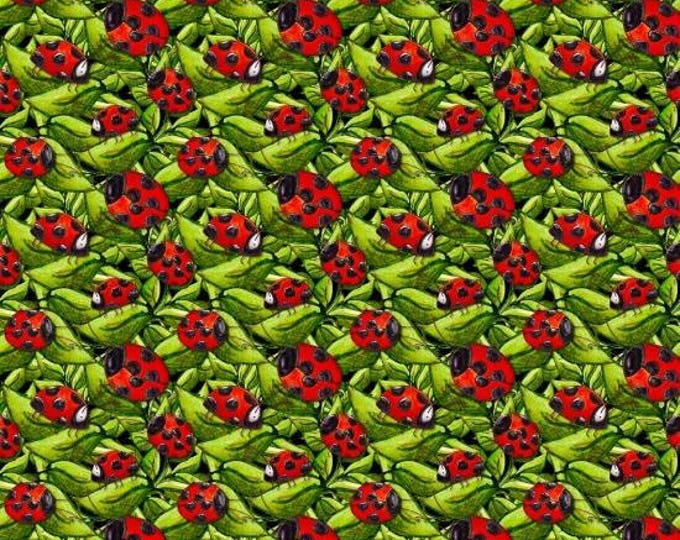 Garden Glory by Blank Quilting - Ladybugs Green  - Cotton Woven Fabric