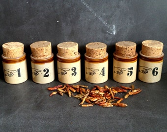 6 ceramic Jars with Cork Lid, Rustic kitchen Canisters. 6 Spice Herb jar set numbered