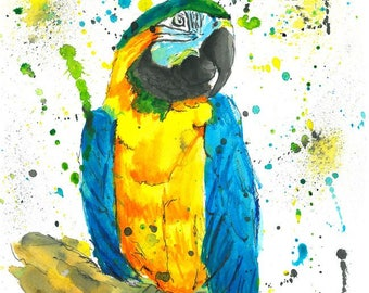 Parrot (Blue & Gold Macaw) - Watercolor Painting Print