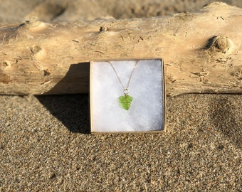 Pescadero Sea Glass Necklace with Gold Filled Chain