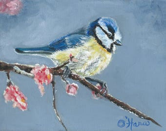 Blue Titmouse bird in the early spring blossoms original 8 x 10 painting
