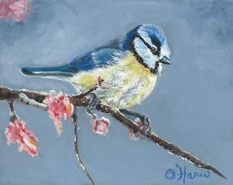 Blauer Vogel Meise im frühen Frühling Blüten original 8 x 10 Gemälde