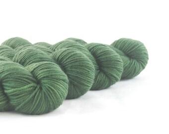 Creature From the Black Lagoon Hand Dyed Superwash Merino DK Yarn Dark Green