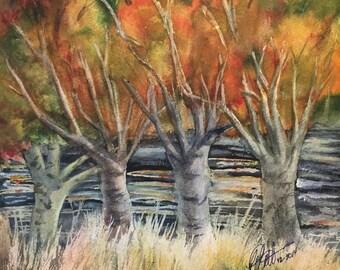 Autumns of Neuse