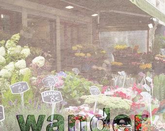 Downloadable Wall Art, Inspirational Square Photograph, Paris Flower Market Wander - Lower Case