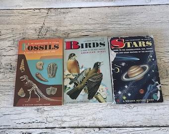 Golden Nature Guide - Pocket Size -  Lot of 3 Stars - 1956 Birds  1956 Fossils  1962