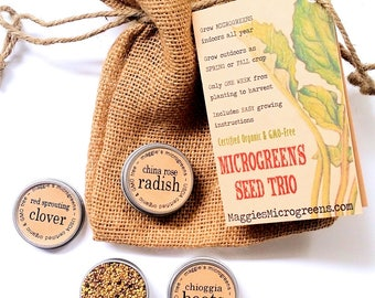 DIY Microgreens CUSTOM Mini Seed Kit Indoor Garden - Choose Any 3 Organic Vegan Gourmet Microgreens Seeds in Burlap Gift Bag w Instructions