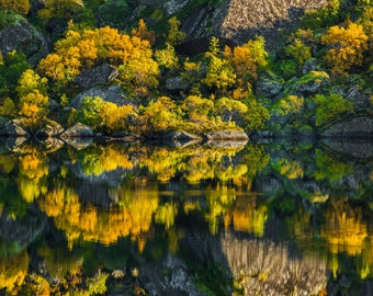 """Norway Gold Pond, Water Reflection Art, Fall Photo, """"Norway's Golden Pond"""""""