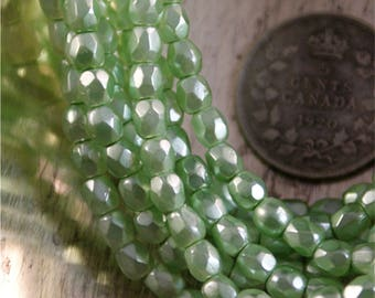 Czech Glass Beads 50pcs of 3mm Round Faceted Firefolished  Light Green Pistachio Pearl.