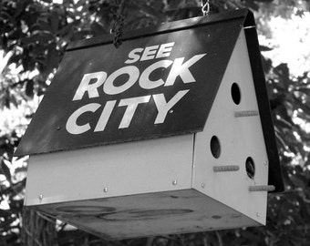 See Rock City Birdhouse Picture, Black and White Photo, Bird Photography