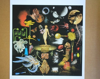 Collage Giclee print Reincarnation Surreal Dream  Magazine cut hand made Ontogony