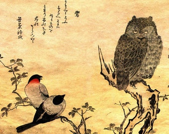 ORIGINAL design, durable and WASHABLE PLACEMAT - painting - Japanese Art - sparrows and OWL - classic.
