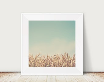 wheat photograph wheat field print farm house decor country decor rustic decor nature photography mint green gold decor