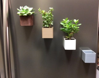 3D printed magnetic planters (Set of 2 or more)-Free shipping