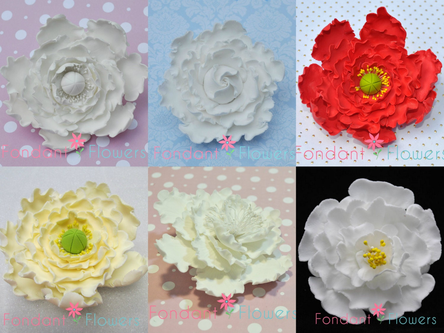 Gumpaste Peony Flowers Red White Pink Yellow Closed Or