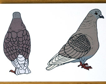 Pigeon Card, London Cards, Greeting Cards, Pigeon Illustration, Pigeon art, Bird card, London Note Card, Birds art, Birds Greeting Card
