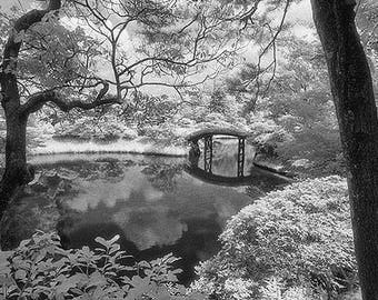 Bridge / Lake / Trees, Kyoto, Japan