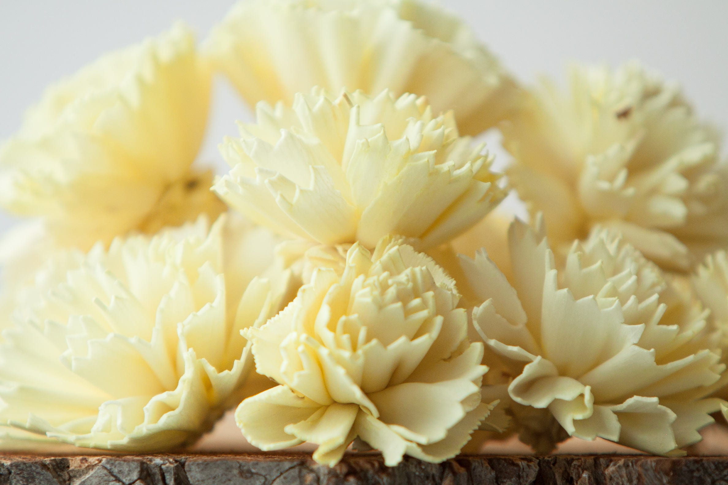 Pale Yellow Carnation Sola Flowers Set Of 10 Sola Flowers