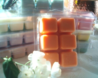 Hopscotch Wax Melts--Soy Wax Melts, Wax Tarts, Butterscotch & Marshmallow, Sweet, Candy, Highly Scented, Unique Variety Wax Melts, Best Sell