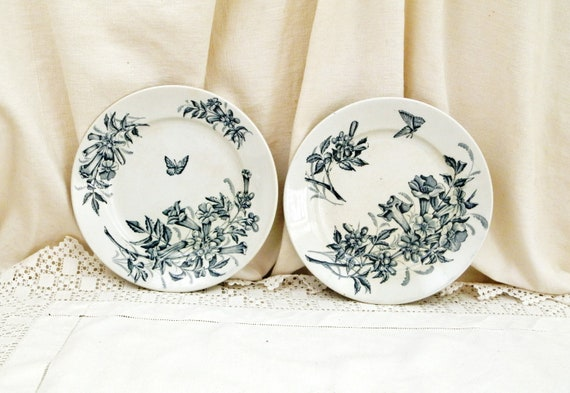 2 Antique French Ironware Plates with Butterfly and Flower Pattern by Badonvillers, Pair Decorative Victorian Ironstone Plate from France