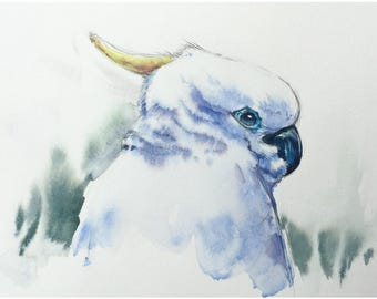 White Parrot - Original Watercolor Painting