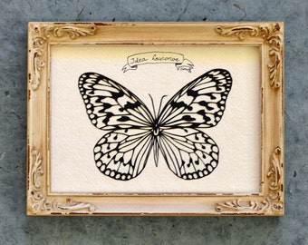 TREE NYMPH BUTTERFLY Papercut - Hand-Cut Silhouette, Framed