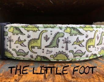 "Boy Dog Collar with Green Dinosaur Print ""The Little Foot"""