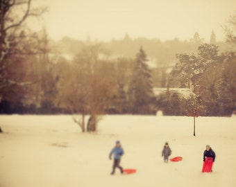 "Nature photography, Snow art print, Winter print, Christmas - ""A Revolution of Snow"""