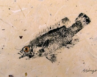 ORIGINAL 8 X 10 Matted Salt Water real Cunner #2 GYOTAKU Beach House fishing Art ( Fish Rubbing ) on hand made Paper