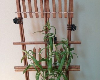 """Houseplant Trellis for Herb Garden Support- With """"Tomatoes"""" Sign"""