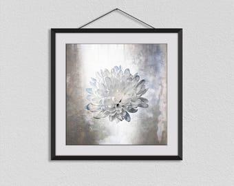 Chrysanthemum, Botanical Prints, Flower Photographs, Flower Wall Art, Romantic Art, Square Print, Nature Art, Flower Wall Decor