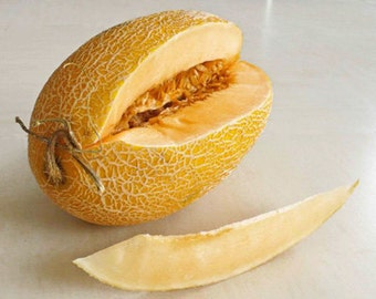 Organic Heirloom 30 Seeds Chinese Hami Melon Seeds Fruit Seeds Grow in Garden Edible Delicious crisp and sweet F101