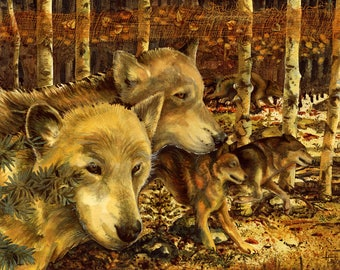 Wolf Dreaming - Limited Edition Reproduction Giclee Print in 16x20 black mat