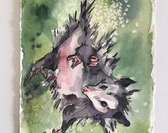 Possum Painting - Watercolor Art of Possum Hanging Upside Down - Upsidedown Cutie - Animal Watercolor Painting of Oposum - Cute Nursery Art