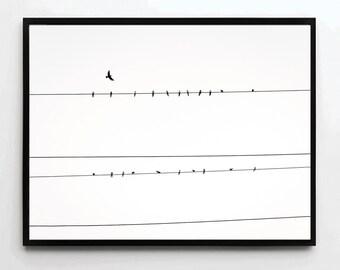Birds Photo, Bird Poster, Bird Print, Bird Art, Birds Poster, Home Decor, Bird Wall Art, Bird Decor, Animal Print, Animal Poster, Animal Art