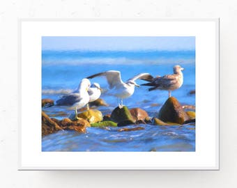Seagulls Print - Beach Cottage Decor, Digital Download, Beach Decor, Nursery Wall Art, Seagulls Art Print, Printable Art, Seagulls on Rocks
