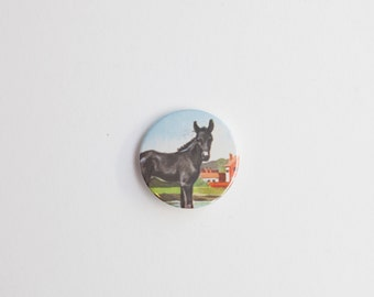 Foal - A Badge / Pinback Button made from a Vintage Ladybird Book, 38mm 1.5 Inches