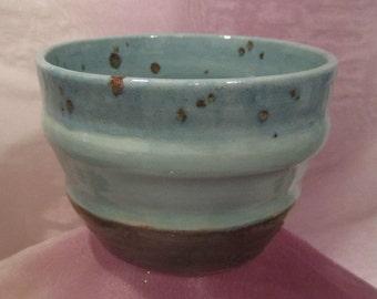 Blue Brown Flower Pot